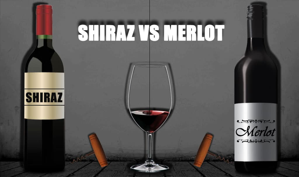 Merlot vs Shiraz   Which is the one for 2021?